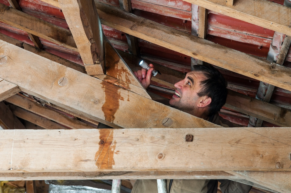 man with flashlight up in rafters of the attic doing a home roof inspection