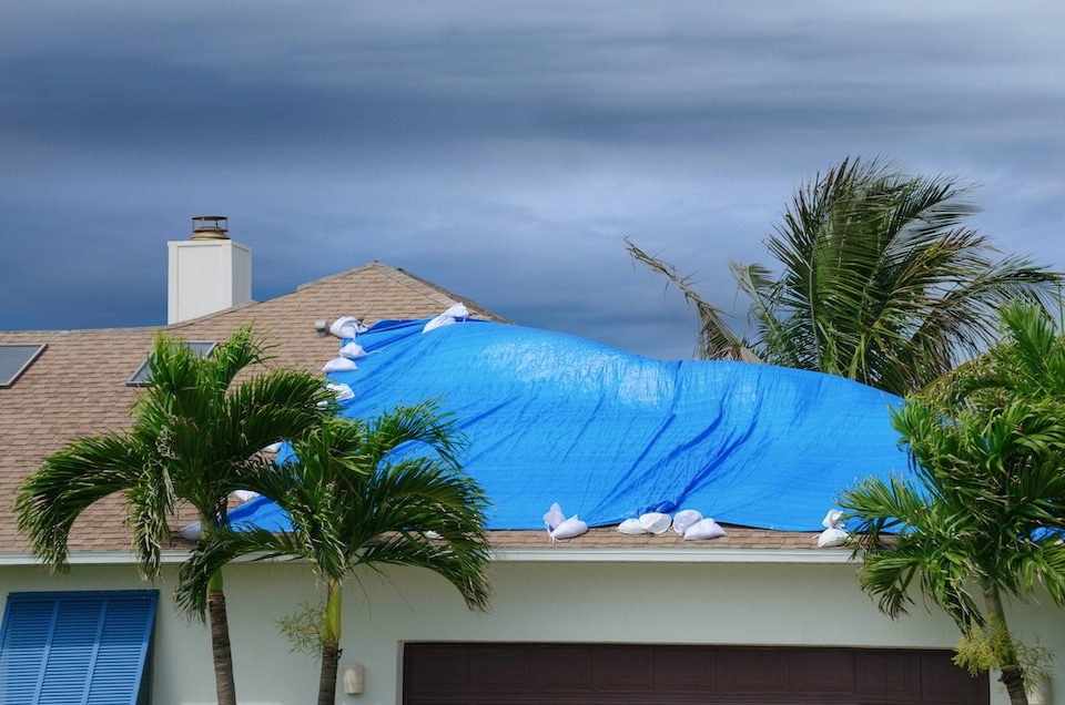Storm damaged roof on house with a blue plastic tarp over hole in the shingles and rooftop; hail damage roof guide