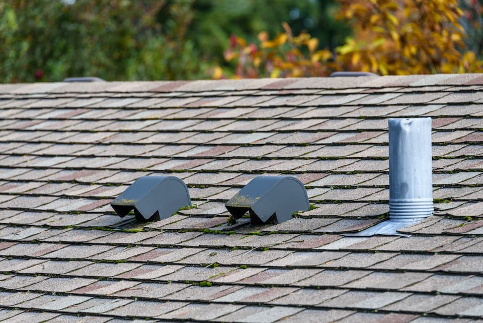 Suburban house rooftop, asphalt shingles, roof vents, fall color with magnolia tree behind the roof, sunny day; 8 valuable roof maintenance tips